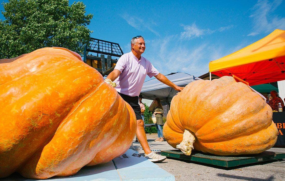 Giant pumpkin contest photo