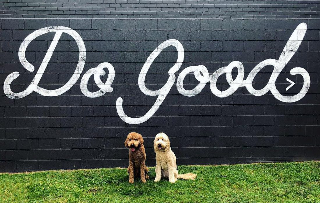 Two dogs in front of the Do Good mural on Historic Commercial Street in Springfield MO