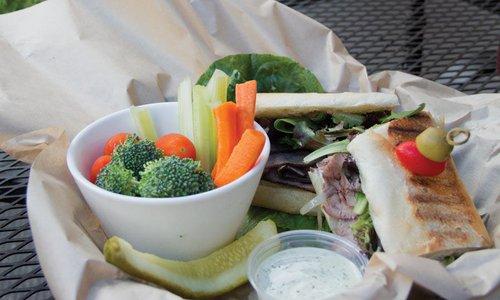 Schwinn Sandwich