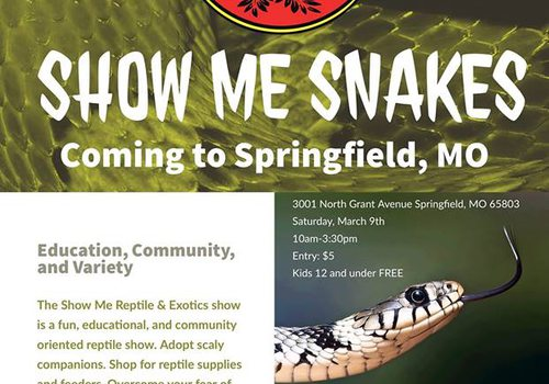 snake exhibit in springfield mo
