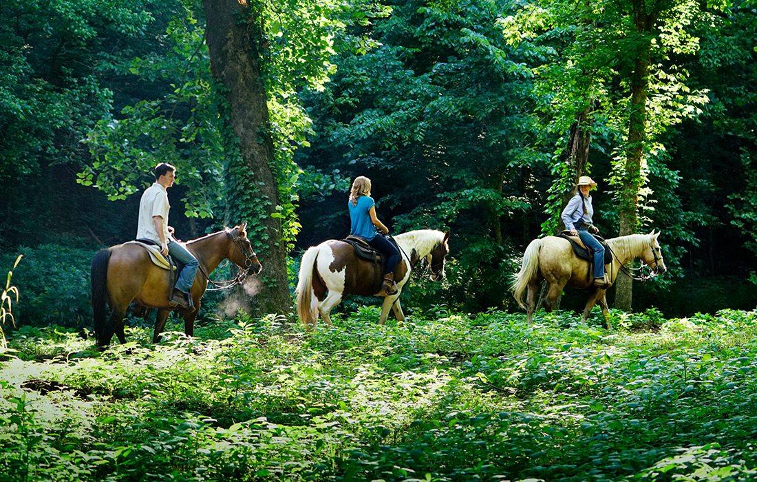 Horseback riding at Dogwood Canyon in Branson MO