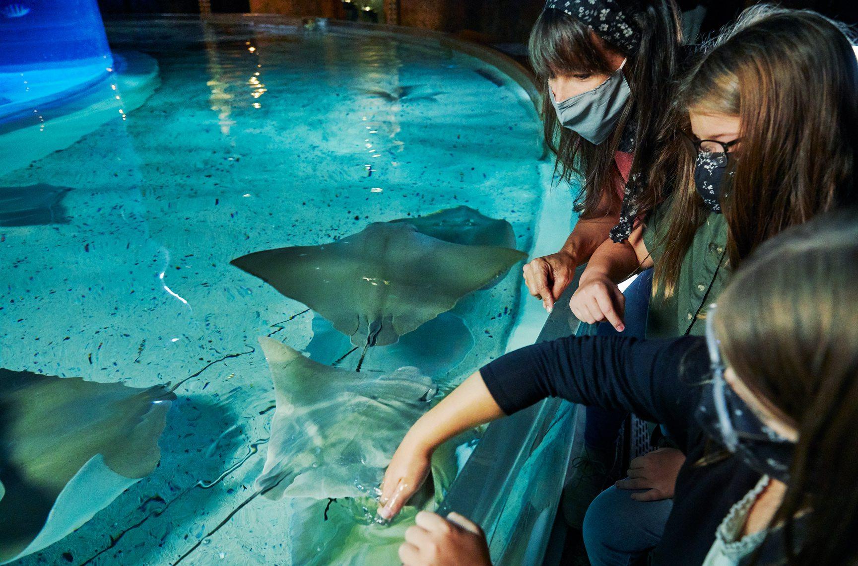 children at Wonders of Wildlife