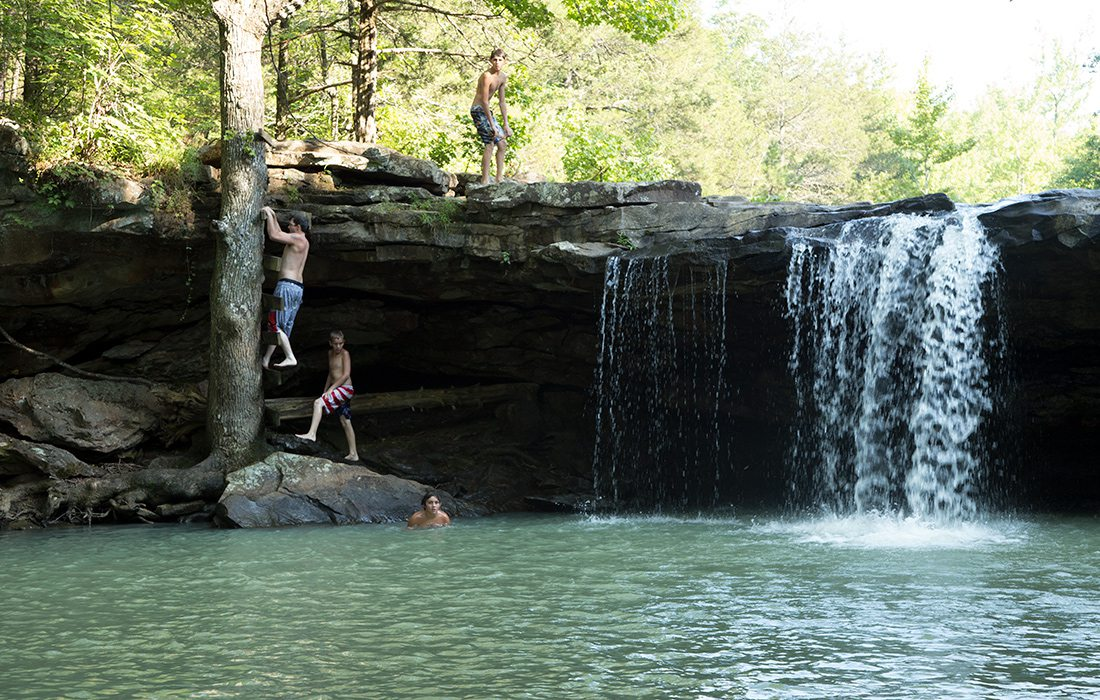 A makeshift ladder on a tree allows you to climb from the swimming hole at Falling Water Falls to the top of the waterfall.