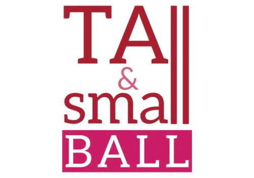 Tall & Small Ball for Foster Youth in Springfield MO