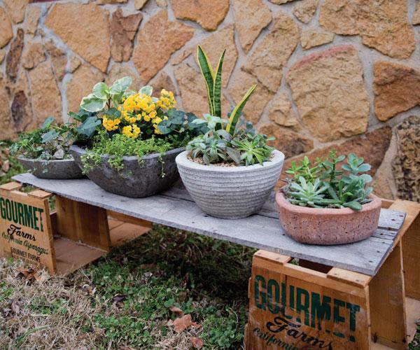 Gardening Workshop in Springfield, MO