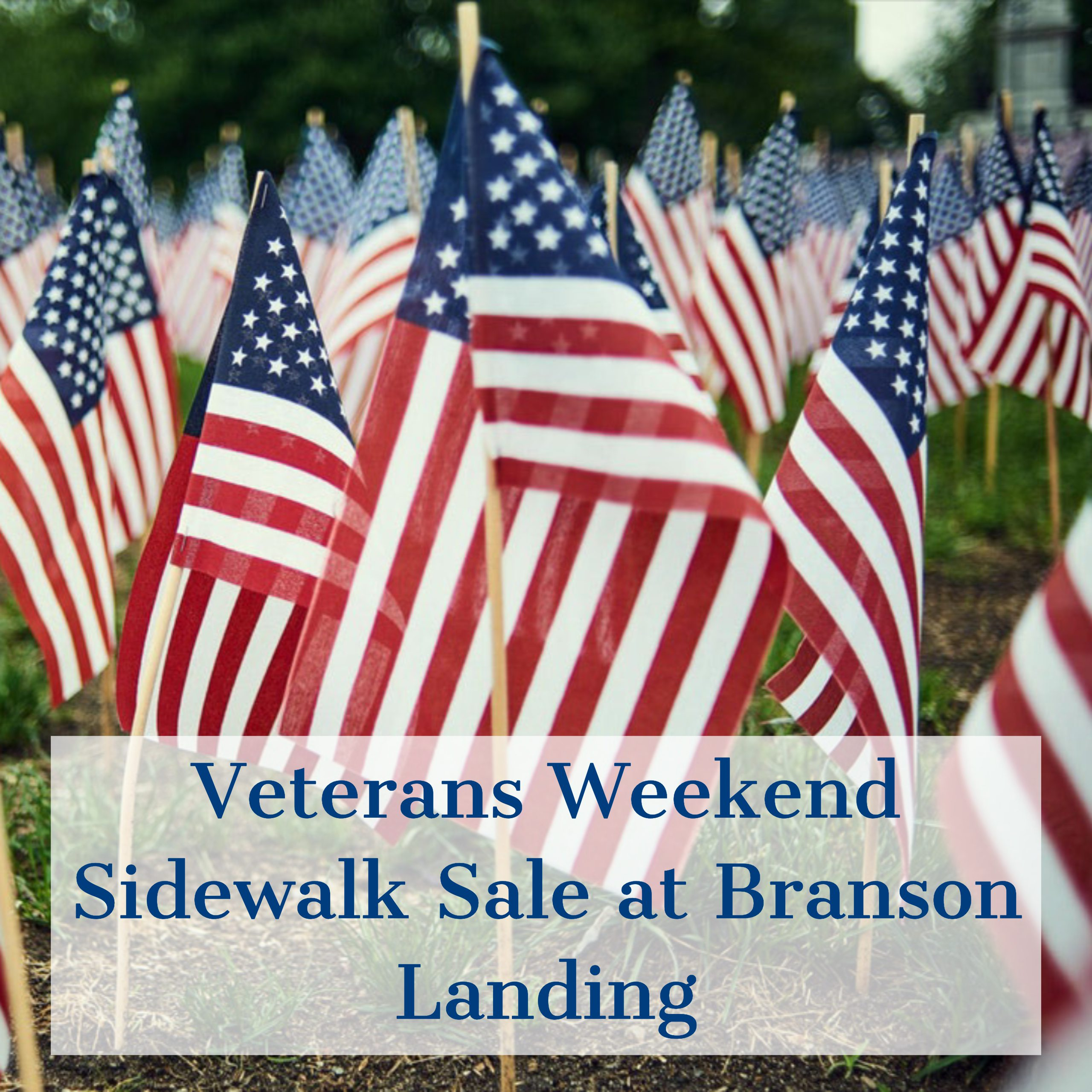 VETERANS DAY WEEKEND SIDEWALK SALE AT BRANSON LANDING