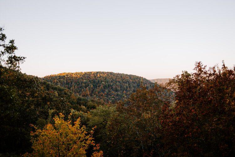 Arkansas Mountainside