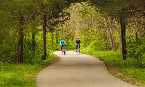 Updates Being Made to Improve 417-Land Trails