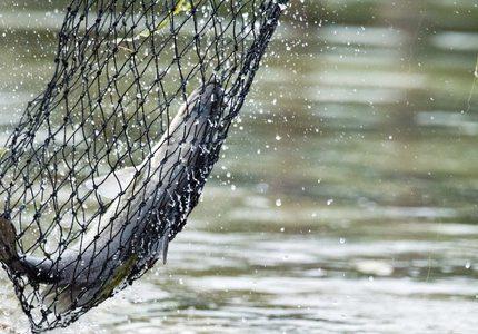 Girls Free Fishing Day