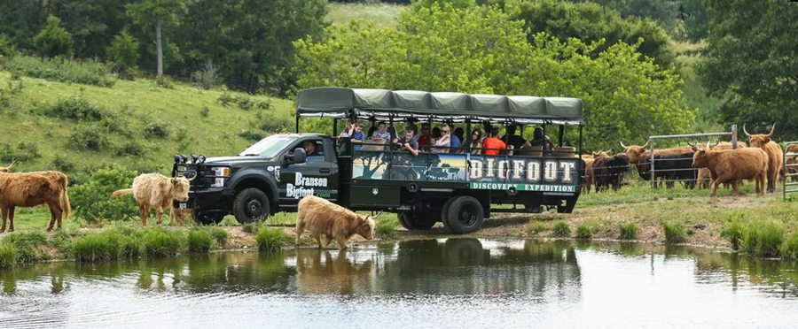Bigfoot Discovery Expedition in Branson