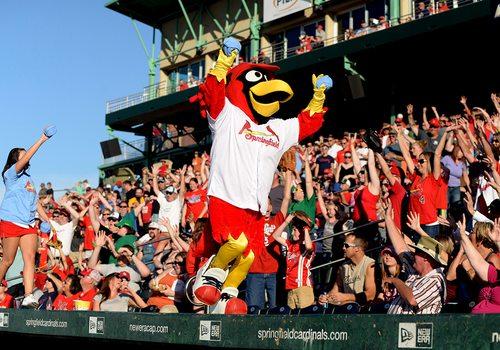 Springfield Cardinals mascot.