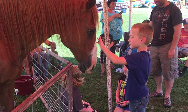 Christian County Fair