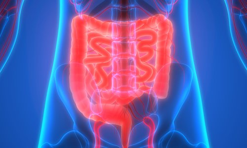 Let's Talk About Poop: Caring for Your Colon