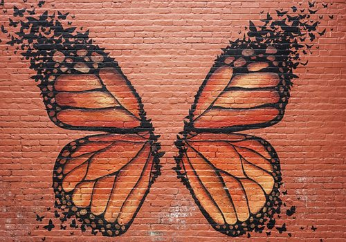 Butterfly wing mural from Downtown Springfield