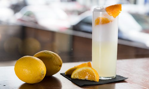 gin fiz with lemons and orange slices