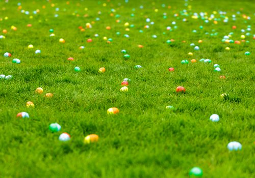Easter Egg Hunt in Springfield, MO