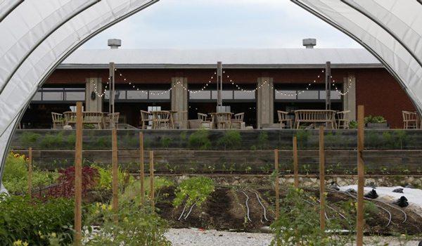 Earth Day Farm Tours at Finley Farms