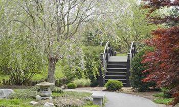 stroll garden in Springfield