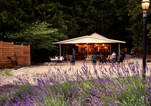 Celebrate Summer at Lavender Falls Farm