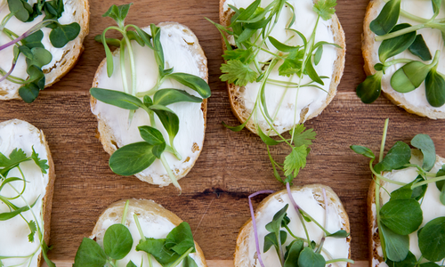 Give Microgreens a Try