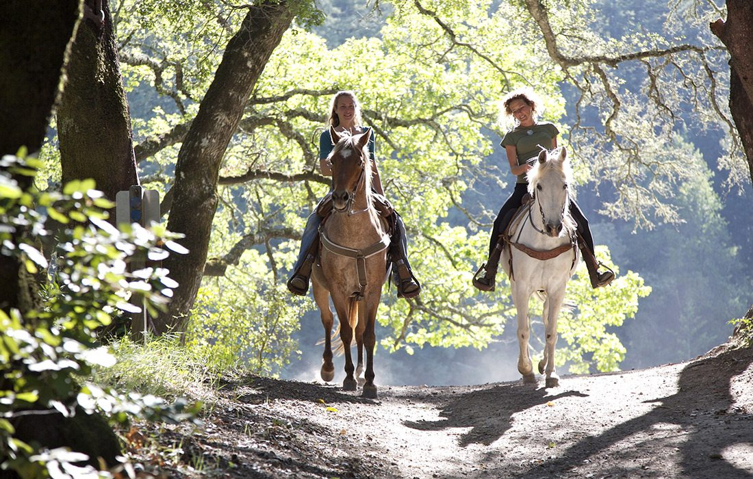 Horseback riders on trail stock image