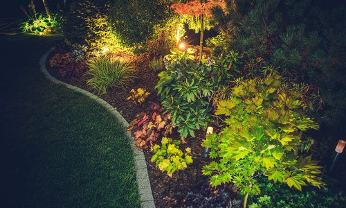 Stock image of backyard lighting