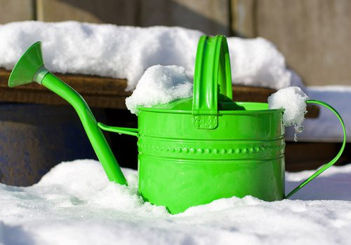 Green watering can sitting out in the snow stock image
