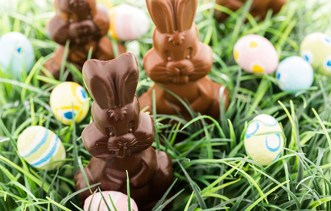 Chocolate bunnies in grass stock image