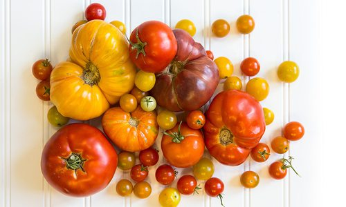 How to Pick the Perfect Summer Tomato