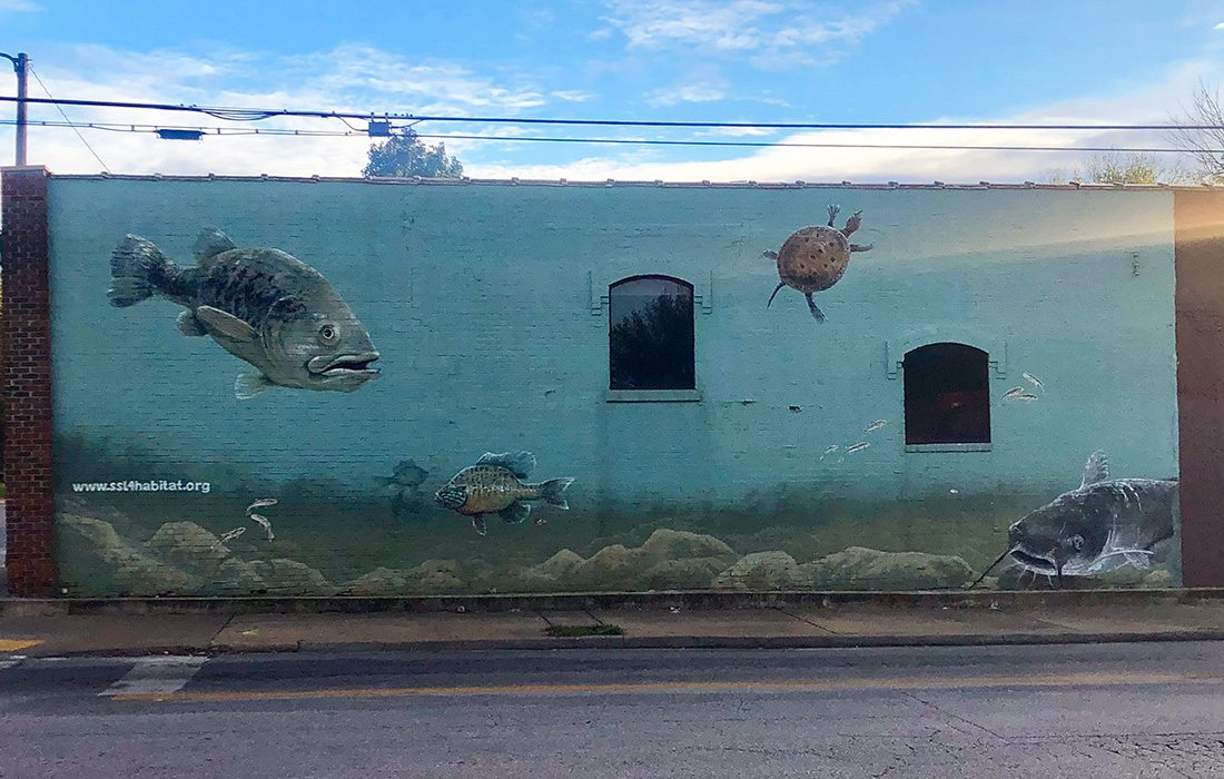 underwater mural in Springfield MO