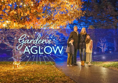 Garden Glow in Springfield, MO